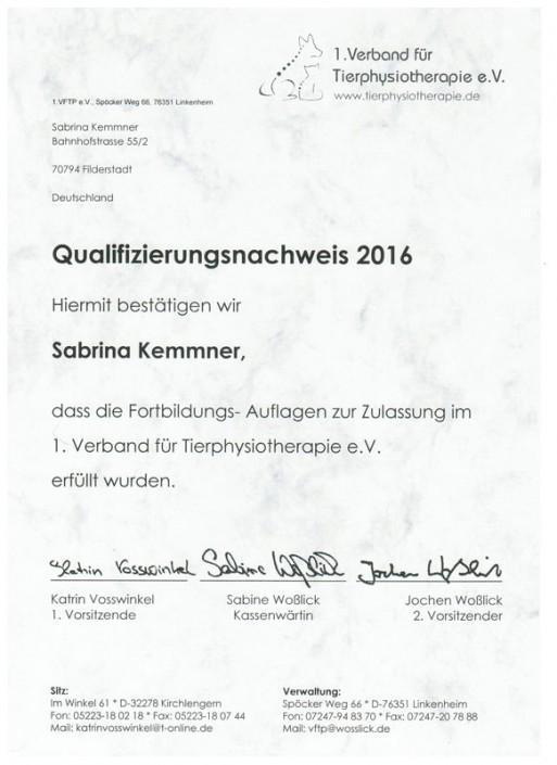 Qualifikationsnachweis 2016