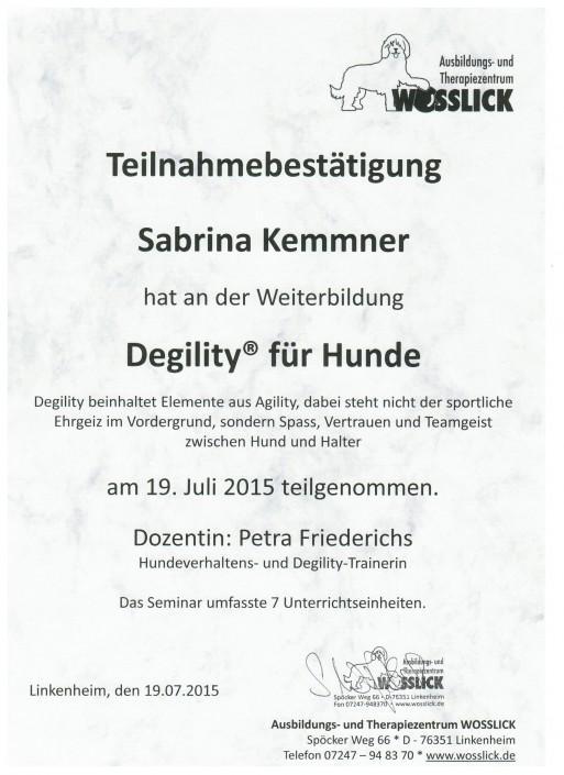 Teilnahmebestätigung Seminar Degility