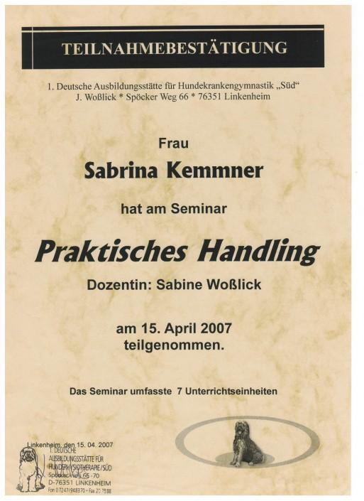 Zertifikat Seminar Praktisches Handling Sabrina Kemmner
