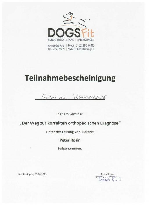 Hundephysiotherapie Sabrina Kemmner Orthopädische Diagnose