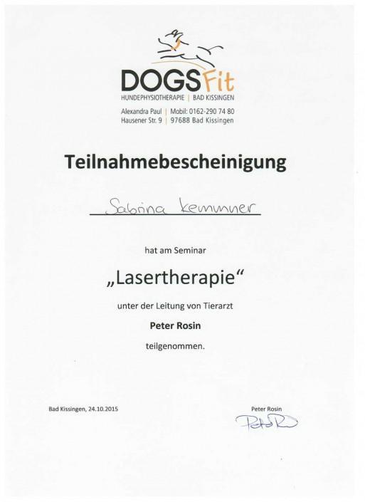 Hundephysiotherapie Sabrina Kemmner Lasertherapie