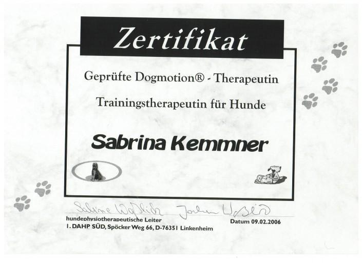 Zertifikat Dogmotion