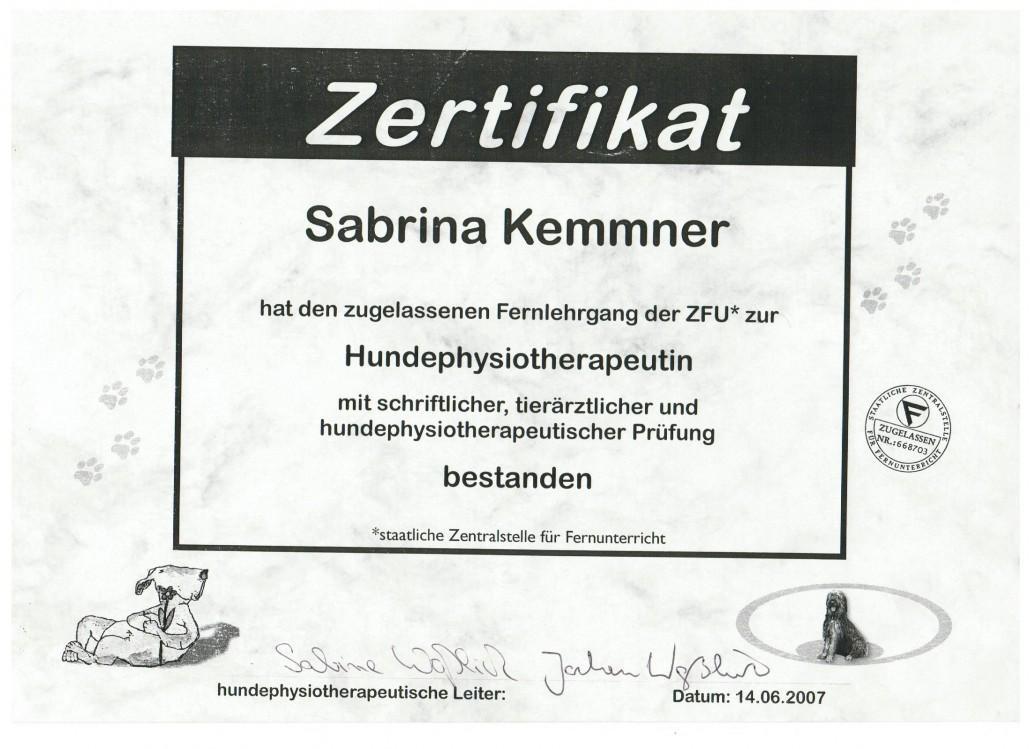 Zertifikat Hundephysiotherapeutin - P4 - Das Hunderevier