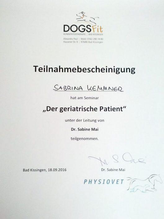Zertifikat Hundephysiotherapie Der geriatrische Patient