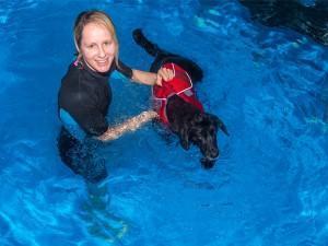 Hundeschwimmen im Indoor-Pool
