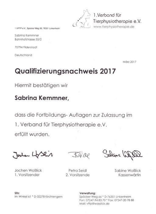 Qualifikationsnachweis 2017