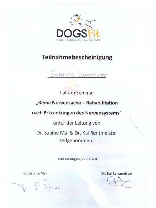 Zertifikat Seminar Neurologie
