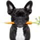 Hundefutter und Futterzusätze von Reico